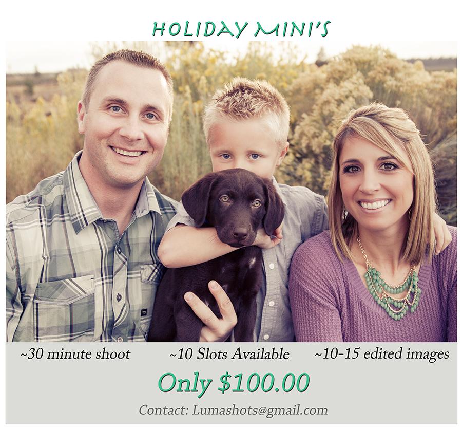 Holiday Mini's